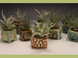 Pinch Pots with Airplants